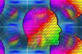 Empirische data uit de kleurentest
