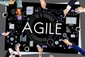 Hoe agile moet je als organisatie (willen) zijn? (longread)