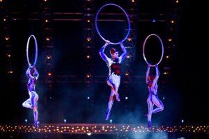 Bij Cirque du soleil werd een clown aangenomen voor in de boardroom