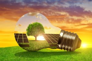 Consument verwacht hulp bedrijven bij duurzame keuzes