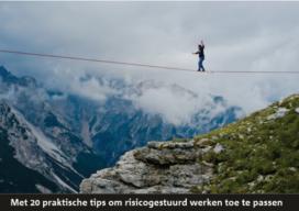 Whitepaper: Risico is geen probleem