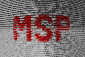 MSP door te profiteren van netwerkeffecten