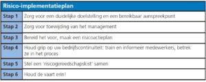 De zes stappen van het risico-implementatieplan (klik voor groter)