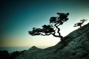 Eric de Blok ziet de natuur als inspiratiebron voor leiders