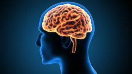 Hoe houd je je brein in topconditie?