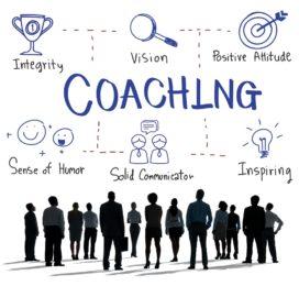Wat is een teamcoach?