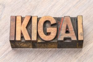 Building Tribes – Ikigai